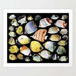 Butterflyfish_Black base Art Print