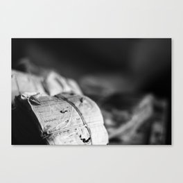 Worklogs Canvas Print