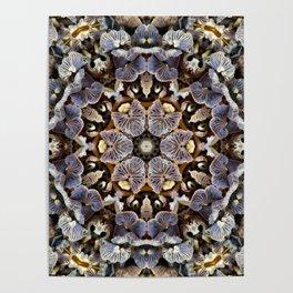 Mushroom Mandala 2 Poster