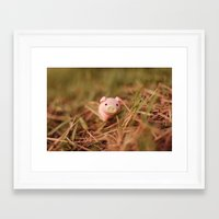 pig Framed Art Prints featuring Pig by Natália Viana ♥