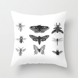 Insect Illustration Collection Throw Pillow