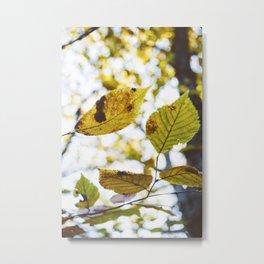 Little Leaves Metal Print