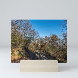 Autumnal path through the woods Mini Art Print