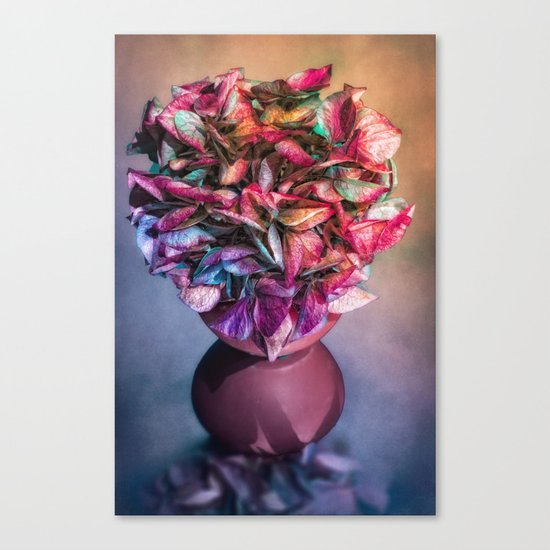 STILL LIFE WITH HYDRANGEA IN A VASE Canvas Print