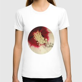 Hibiscus Flower Close Up Photography Floral Art T-shirt