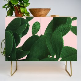 Cactus On Pink Credenza