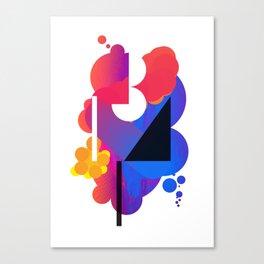 2013 – 14 Canvas Print