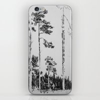 birch iPhone & iPod Skins featuring Birch  by Kelly Baskin