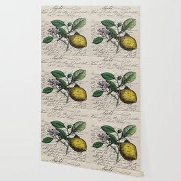 vintage Mediterranean summer fruit orchard citrus blossom yellow lemon Wallpaper