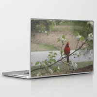 cardinal Laptop & iPad Skins featuring Cardinal  by Earth'sAnimalActivist23