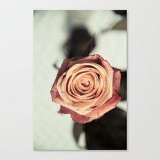 Yellow Vintage Rose Canvas Print