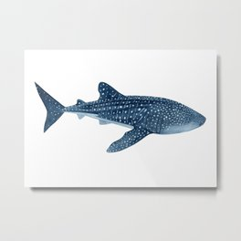 WHALE SHARK III Metal Print