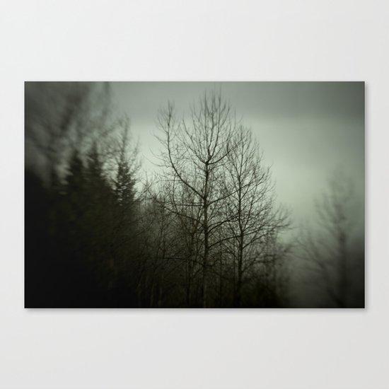Tree mist Canvas Print