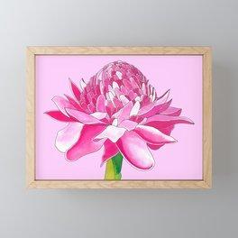 Flower#11 - Red Ginger Lily Framed Mini Art Print