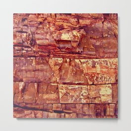 Petrified Wood Metal Print