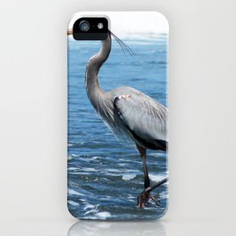 Great Blue Heron on the Pacific Coast in Costa Rica iPhone Case