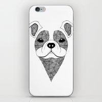 bulldog iPhone & iPod Skins featuring Bulldog  by Art & Be