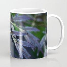 The Beauty of Sambucus Nigra Foliage Coffee Mug