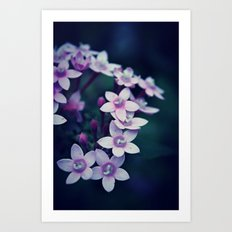 Spring Flower 11 Art Print