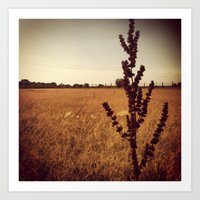 wisconsin Art Prints featuring Wisconsin Prairie  by Josrick