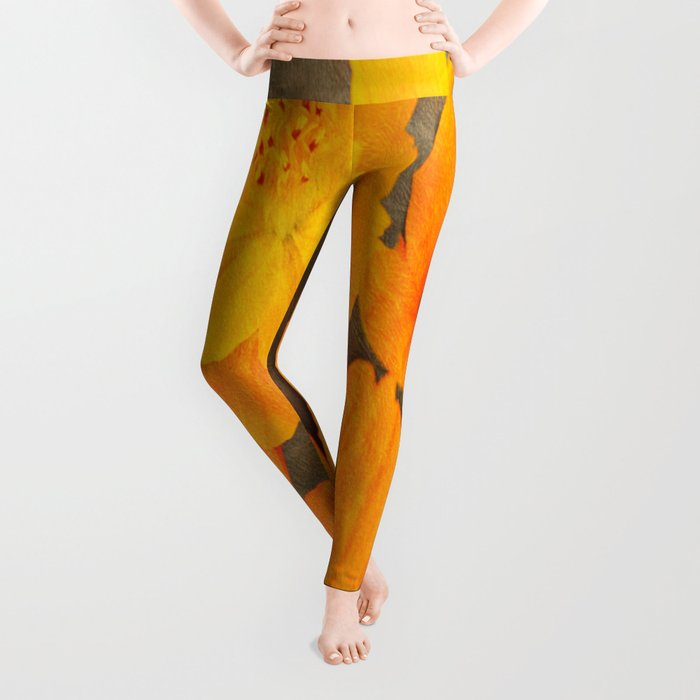 Bright Lights Cosmos Flowers Leggings