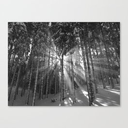 The Golden Light (Black and White) Canvas Print