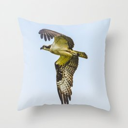 Soaring Osprey Throw Pillow