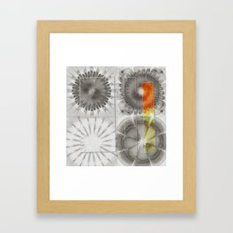 Rearisal Woof Flower  ID:16165-041512-61251 Framed Art Print