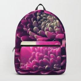 Purple Germini Closeup 1 Backpack