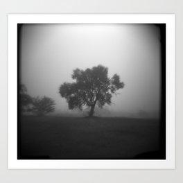 Tree in Field of Fog Art Print