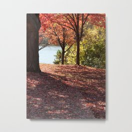 Autumn Shade Metal Print