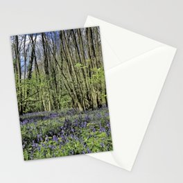 Everdon Stubbs Wood Bluebells Stationery Cards