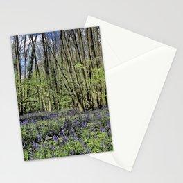 Everdon Stubbs Wood Bluebells Stationery Cards
