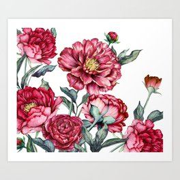 flower watercolor4 Art Print