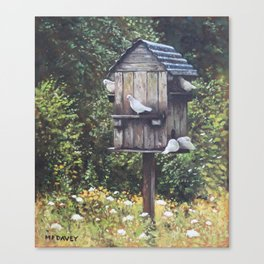 White Doves using a Dovecote  Canvas Print