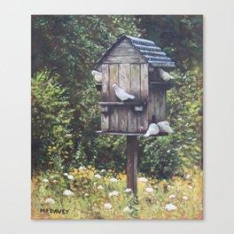 White Doves using a Dovecote  Canvas Print