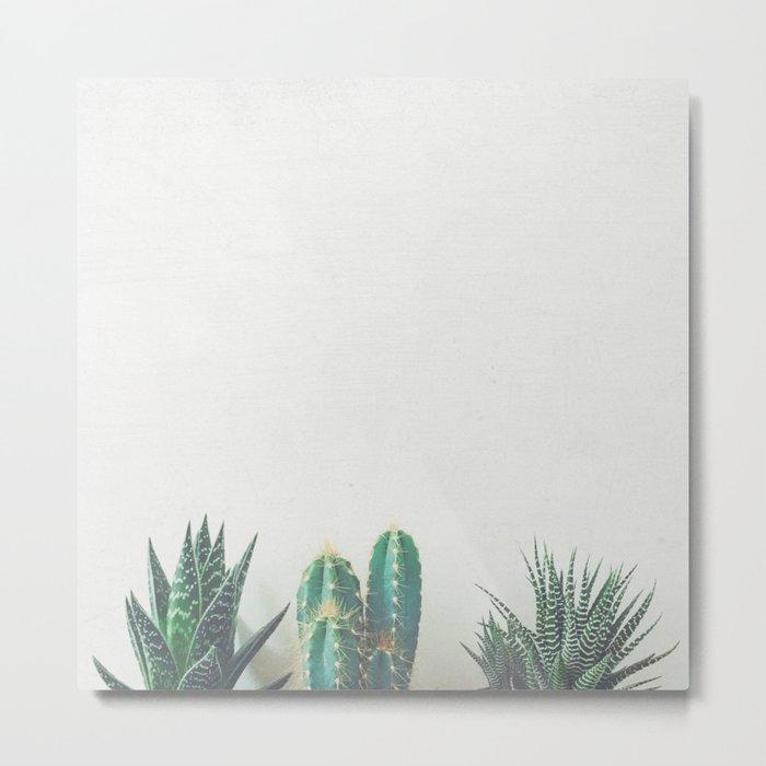 Cactus & Succulents II Metal Print