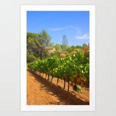 Among Pines and Vineyard Art Print