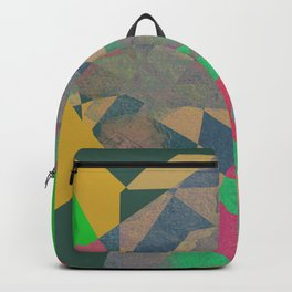 SERENUM FONTIBUS N2 Backpack