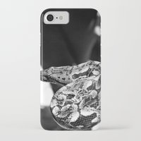 monty python iPhone & iPod Cases featuring Python by NynjaKat