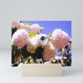 Pink Snowball Branch Mini Art Print
