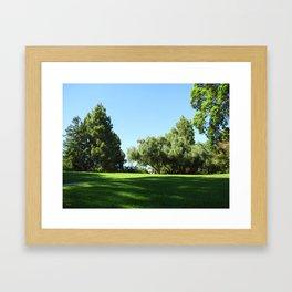 Bella Vista Open Space 2515 Framed Art Print