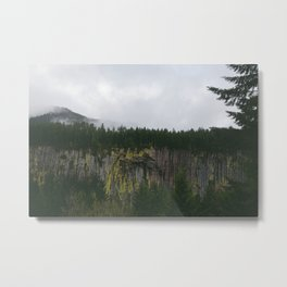 Landscape, Gifford-Pinchot national forest Washington Metal Print