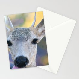 More Curious Than Afraid Stationery Cards