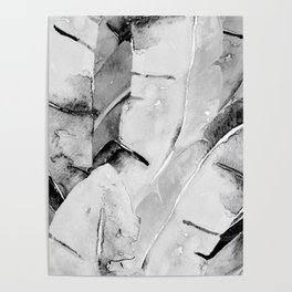 Banana Tree Leaves | Watercolor Black and White Poster