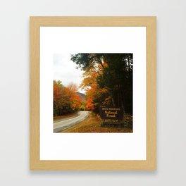 White Mountain National Forest Framed Art Print