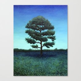 Nocturnal Southern Pine Canvas Print