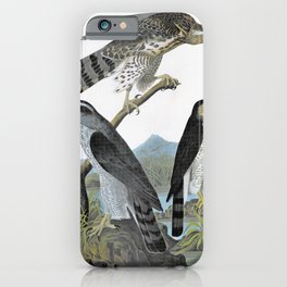Goshawk, Stanley Hawk - John James Audubon iPhone Case