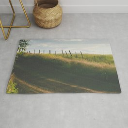 Country Curves Rug