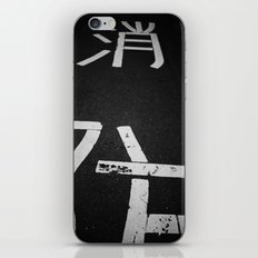 lane iPhone & iPod Skin
